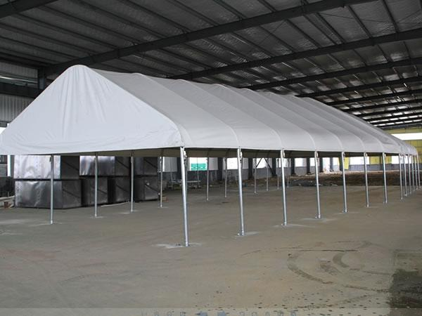 Special pattern high quality canopy